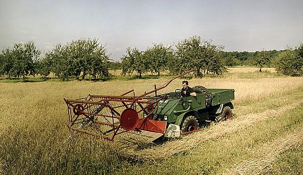Unimog 411 mit Schwadmäher bei der Getreideernte, der Antrieb erfolgt über die vordere Zapfwelle