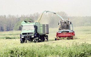 Unimog 437.105 mit zwei Anhängern im Ernteeinsatz